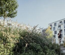Der Innenhof des Wohnquartiers in Block B im Sommer ist üppig begrünt, grüne Bäume und viele Pflanzen säumen die Wege und Plätze, blauer Himmel, ein einladender Ort mitten im Wohnblock.
